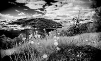 IR-Morgan-Hill_0478