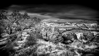 IR-Morgan-Hill_0520