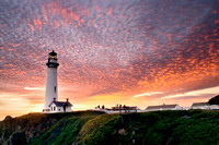 Pigeon_Point7B