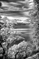 Morgan-Hill-IR_0375-2